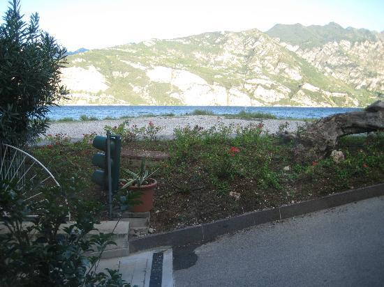 Hotel Europa - Ristorante al Pontile: Bush, traffic light, ramp to car park, bank, log and a bit of lake.