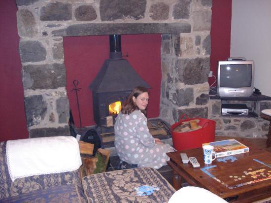 Ty Mawr Farm: log fire