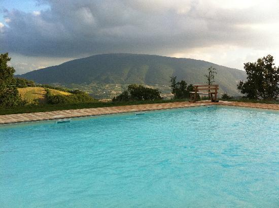 Le Ginestre Bed and Breakfast Assisi: La piscina