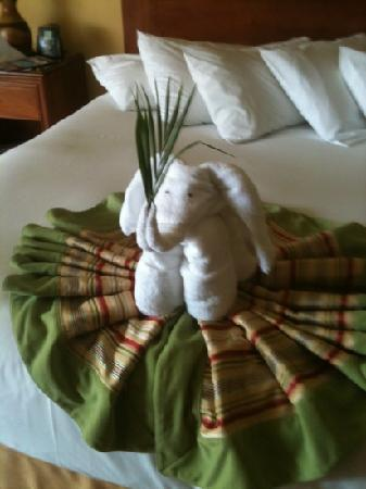 Doubletree Resort by Hilton, Central Pacific - Costa Rica: how cute!