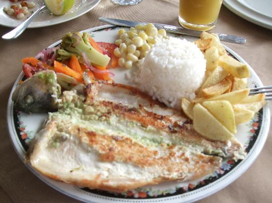 B&B Tumbaco: fresh trout for lunch