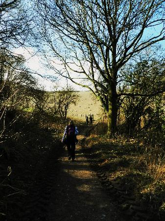 UK Wild Adventures Day Trips : The hike