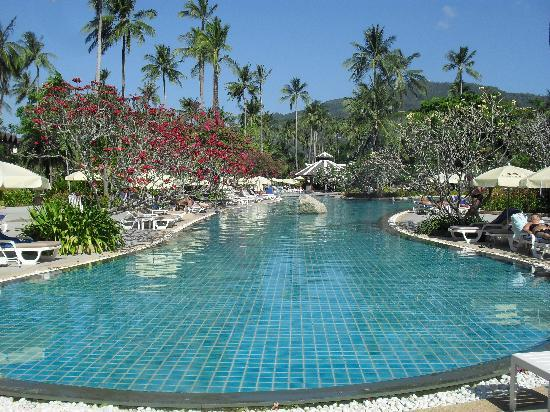 Duangjitt Resort & Spa: main pool
