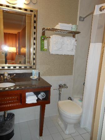 Bathroom Sinks Essex bathroom 304 - picture of chicago's essex inn, chicago - tripadvisor