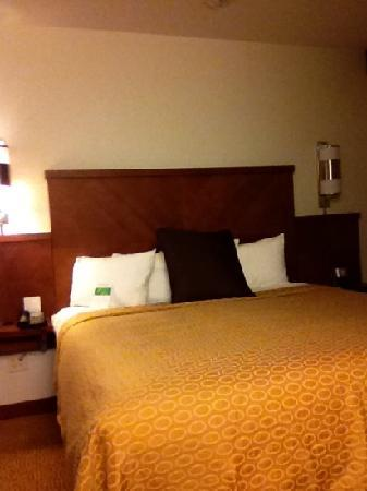 Hyatt Place Chesapeake/Greenbrier: king size comfort