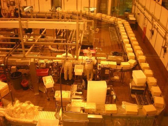 Tillamook Cheese Factory: Cheese belt