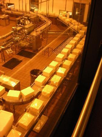 Tillamook Cheese Factory: Blocks of Cheese