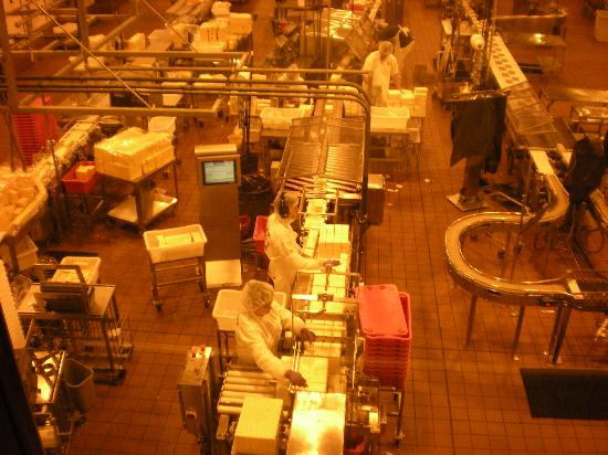 Tillamook Cheese Factory: Packing Area