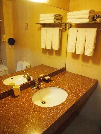 Biwon Tourist Hotel: 洗面台