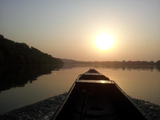 Salim Ali Bird Sanctuary: Dawn