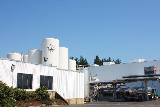 Tillamook Cheese Factory: Outside