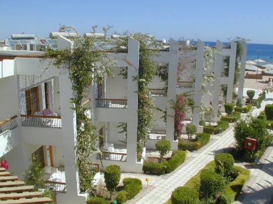 Photo of Menaville Resort Safaga