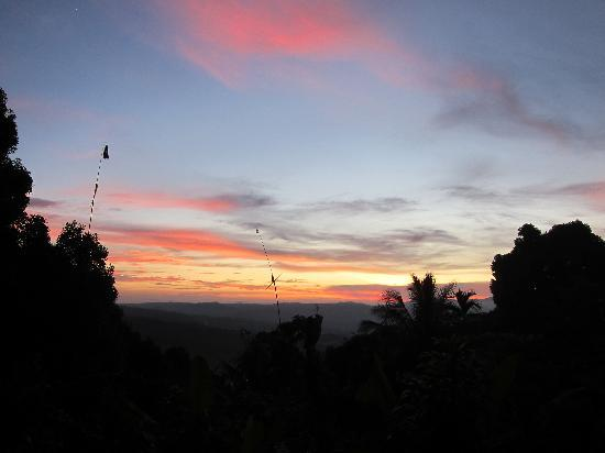 Karangsari Guest House: sunset from the restaurant