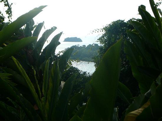 Sea View Resort & Spa Koh Chang: island view