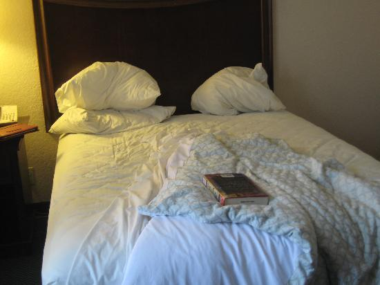 Embassy Suites by Hilton Brunswick : NOT a queen bed