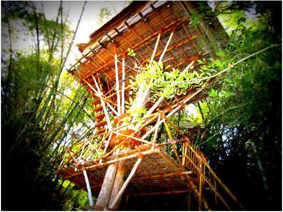 Safari Land Farm & Guest House: tree house 2