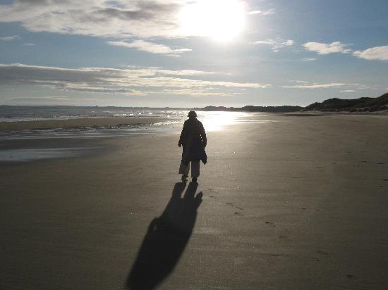 Caithness Seacoast Ltd: Reiss Beach East Caithness