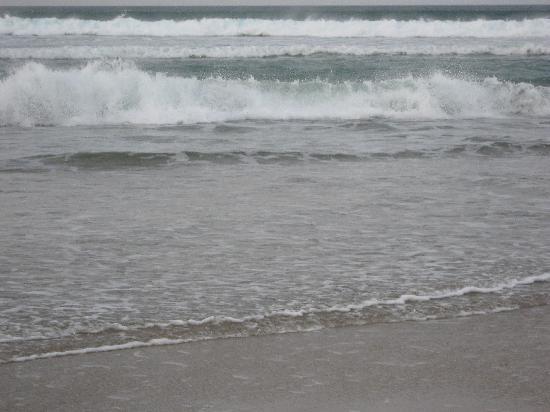 Caithness Seacoast Ltd: Surf, North Caithness