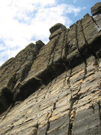 Caithness Seacoast Ltd: Sea cliffs, East Caithness