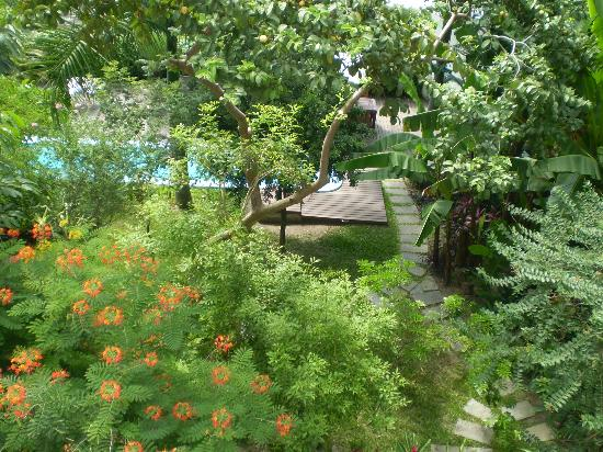 Quinta Rosa: Garden with pool