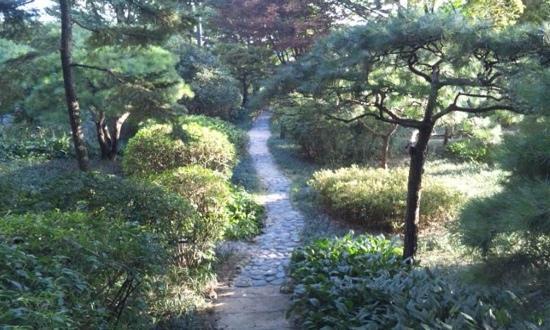 The Shilla Seoul: ホテルの裏の散歩道