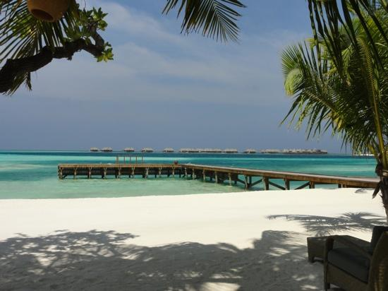 Conrad Maldives Rangali Island: Dhoni Jetty on adults only island