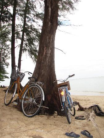 Perennial Resort: las bici que te pasa el hotel