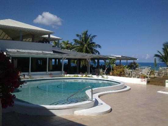 Trade Winds Hotel: The pool at Trade Winds