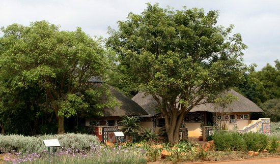 Pretoria, Afrique du Sud : traditional medicinal plant displays