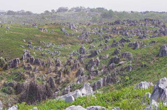 Mine, Japão: Observation viewing area on Karst Plateau
