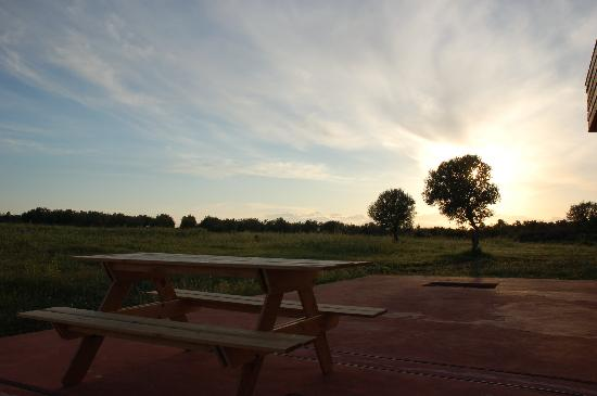 Eumelia Organic Agrotourism Farm & Guesthouse: A summer sunset