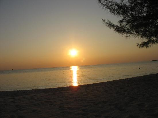 The Avalon: Cayman Sunset