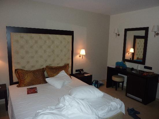 Amalias Hotel : Room