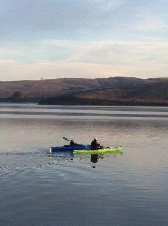 Dancing Coyote Beach: Kayaking on Tomales Bay