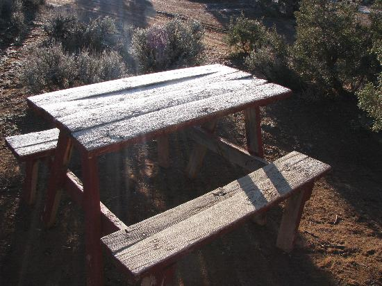 Spider Rock Campground : Morning frost on the pic-nic table
