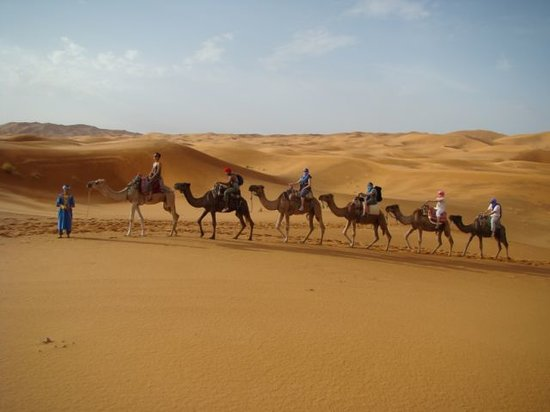 Maroc Expedition - Day Tours: Camel Ride In Erg Chebbi Dunes