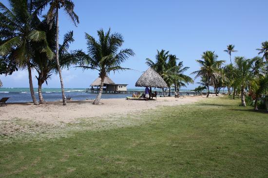Coral Lodge: Vista al Mar!!