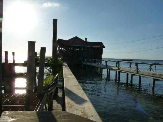 Eagle Rays Bar & Restaurant: As you can see from the street, it is built over the water.