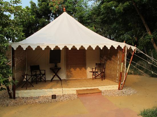 Sher Bagh : The tent