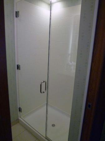 SpringHill Suites San Antonio Airport: shower