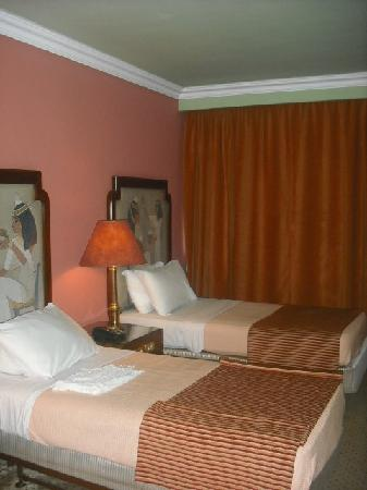 Zayed Hotel: Room
