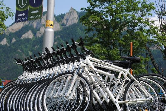 Poprad, สโลวะเกีย: Bicycles ready to be be hired
