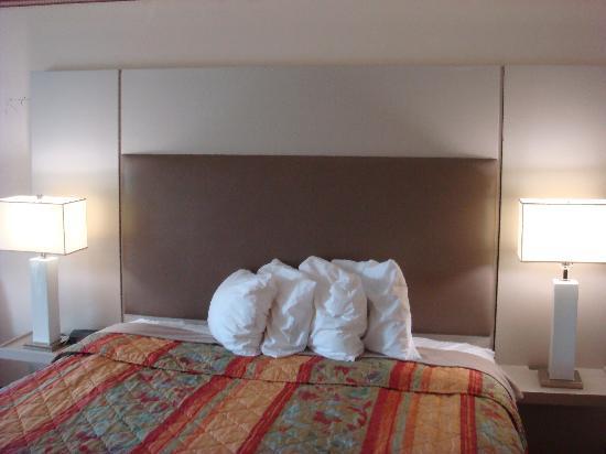 Days Inn College Park/Atlanta /Airport South : King Room 3