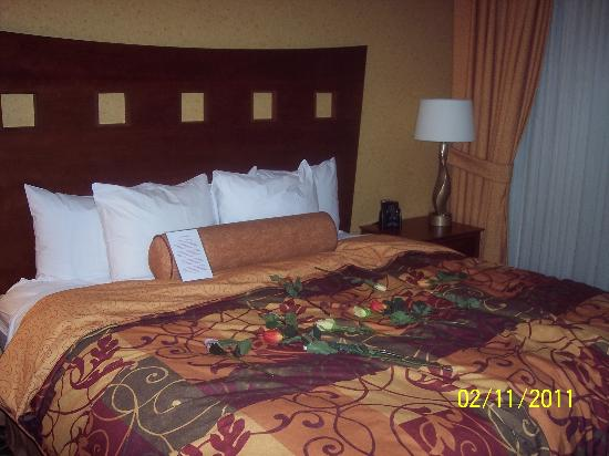 Embassy Suites by Hilton St. Louis St. Charles: vday