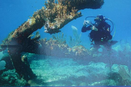 Hotel El Colony: dive site