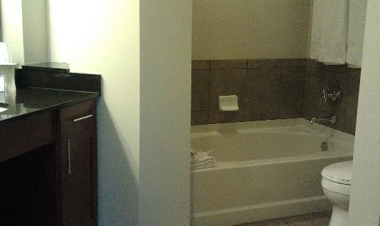 Twelve Atlantic Station: Bathroom. Loved the tub!