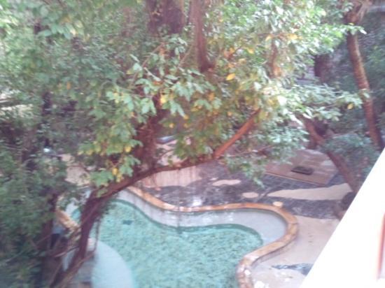 Harazuru Onsen: ジャングル風呂