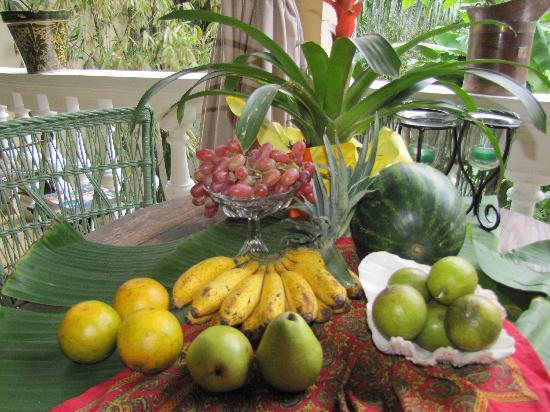 La Casa de la Puesta Del Sol: A Tropical Paradise