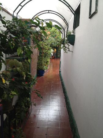 Peru Star Botique Apartments Hotel: Flowers are everywhere.