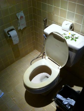 Pao Jin Poon Villas : Toilets